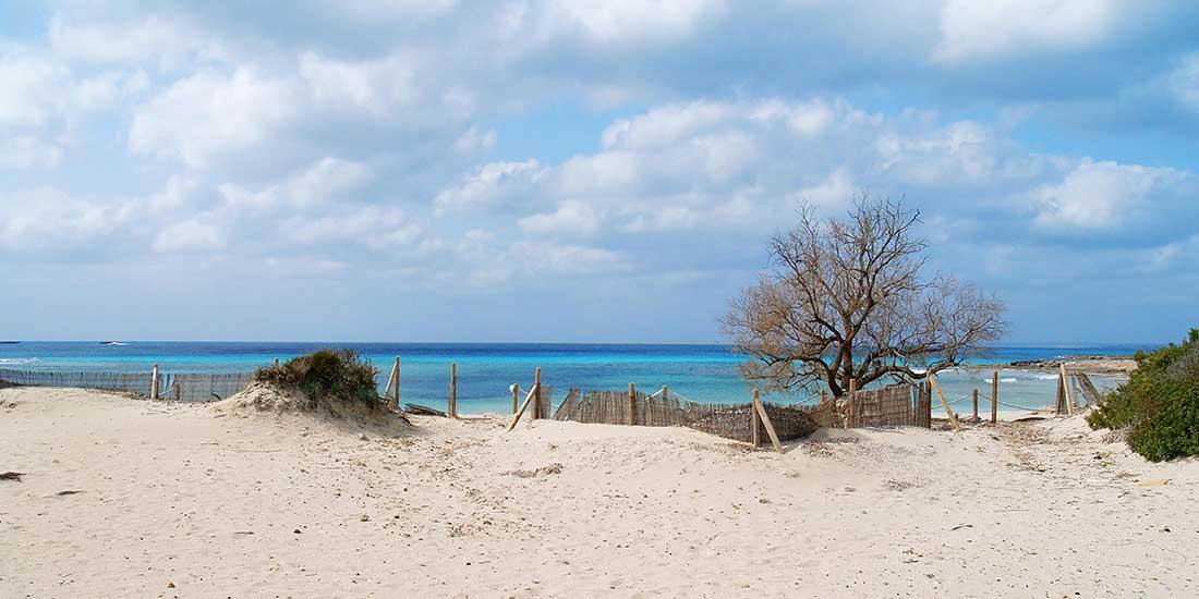 Ses-Arenes-Playa-Tamarindo